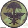 CZECH REPUBLIC 102nd Reconnaissance Battalion parachutist patch, camo version