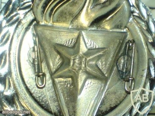סמל כובע ישן של בית הספר לשוטרים img3777