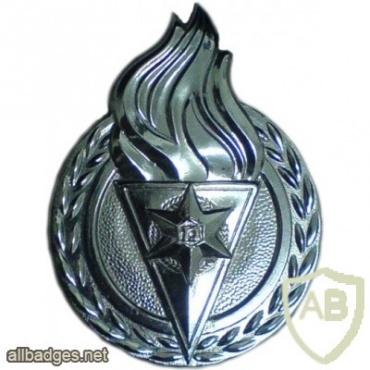 סמל כובע ישן של בית הספר לשוטרים img3778