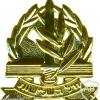 חיל השלישות