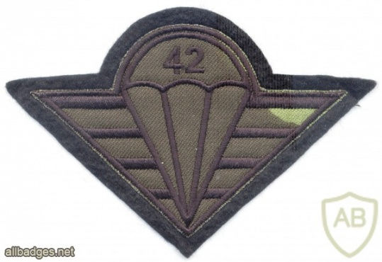 CZECH REPUBLIC 4th Rapid Deployment Brigade, 42nd Mechanized (Infantry) Battalion parachutist patch, camo version img3761