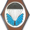 CZECH REPUBLIC 22nd Airborne Brigade, 5th Airborne Reconnaissance Company badge