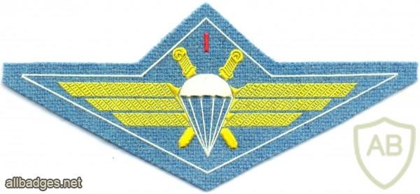 BULGARIA Air Force Parachutist wings, 1st Class, cloth  img4031