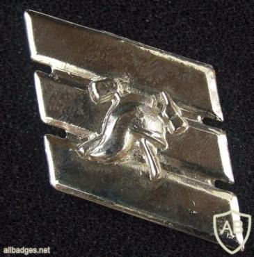 """סמל דרגה רס""""ל כבאות והצלה img4191"""