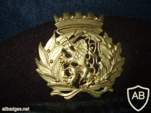 Portuguese Army brown beret with army crest img4375