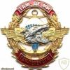 UKRAINE Naval Infantry parachutist badge