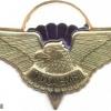 UKRAINE 95th Airmobile Brigade parachutist wings