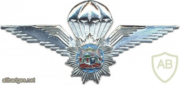 SOUTH WEST AFRICA Police Task Force Parachutist qualification wings img5046
