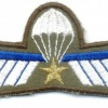 NETHERLANDS Marine Corps Parachutist A Brevet (Operational) wings, full color img5303