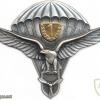 SLOVAK REPUBLIC Air Force Parachutist wings, Class 1