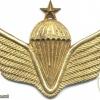 AFGHANISTAN Parachutist wings, Class 3, type II