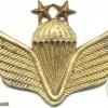 AFGHANISTAN Parachutist wings, Class 2, type II
