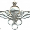 LIBYA Parachute Instructor wings