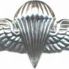 LIBYA Parachutist wings