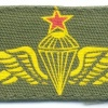COLOMBIA Airborne Parachutist wings, Senior, printed on olive green