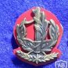 דרגת צווארון רס''ב (רב סמל ראשון בכיר) - חילות השדה
