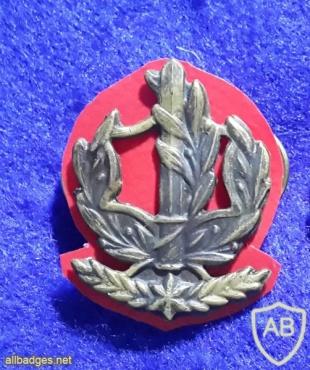 דרגת צווארון רס''ב (רב סמל ראשון בכיר) - חילות השדה img6414