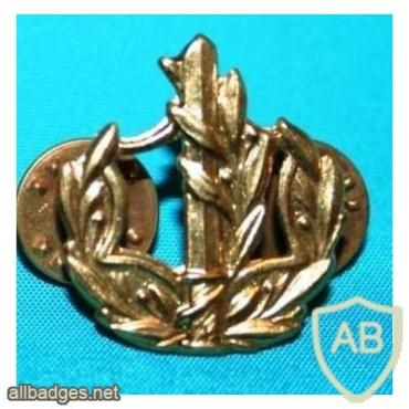 דרגת צווארון רס''ר (רב סמל ראשון) - חיל הים. img6448