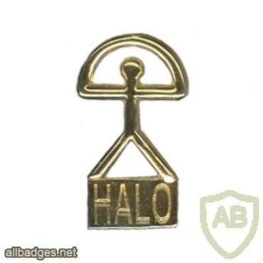 HALO badge img6881