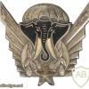 Cote d'Ivore Parachutist wing