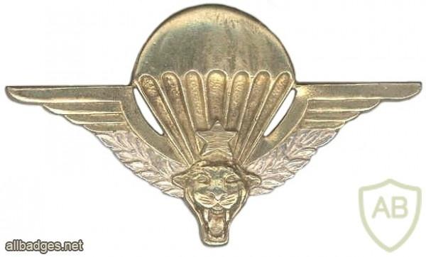 Parachutist wing, officer img6983