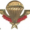 Parachutist wing, advanced, obsolete