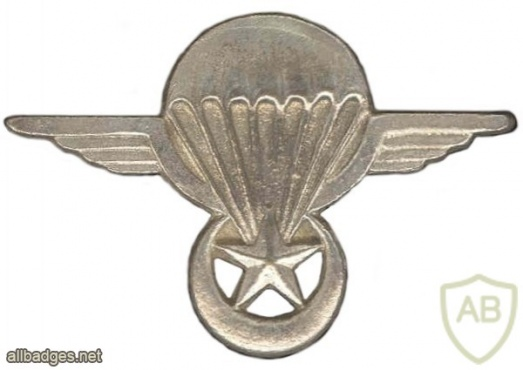 Mauritania Parachutist wing  img6968