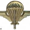 Madagascar Parachutist wing