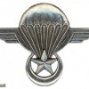 Mauritania Parachutist wing