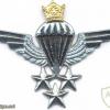 IRAN Parachutist wings, Master