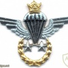 IRAN Jumpmaster Parachutist wings, Senior