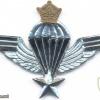 IRAN Parachutist wings, Basic
