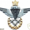 IRAN Jumpmaster Parachutist wings, Master