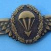 Parachutist badge, bronze