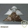 Georgia Army para badges, metal