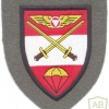 AUSTRIA Army (Bundesheer) - Armed Forces Operations Command patch