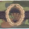 WEST GERMANY Bundeswehr - Army Parachutist wings, Basic, cloth, on camo