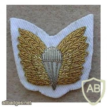 Royal Australian Navy paratrooper cloth wings, summer dress, mess dress img9778