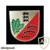 651st Rifles Battalion