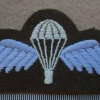 Australia Army paratrooper wings