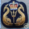 Ships Diver and Shallow Water Diver badge