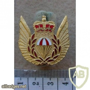 Royal Canadian Air Force Parachute Rescue wings, metal img10220
