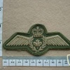 Royal Canadian Air Force Pilot wings, flight suit