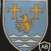 311th Armored Grenadiers Battalion badge img10290