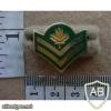 Canadian Master Corporal rank badge, dress shirt