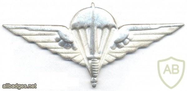 BELGIUM Para-Commando Parachutist beret badge, silver img10396