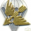 FINLAND Parachutist beret badge img10412
