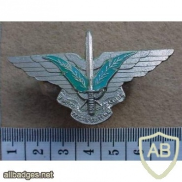 Ciskei Special Forces cap badge, Sword of the Nation1 img10487