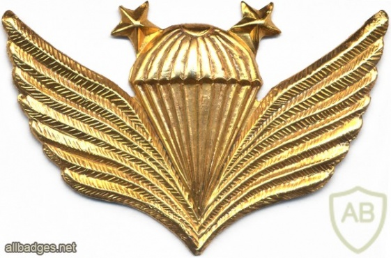 AFGHANISTAN Parachutist wings, Class 2, type II, light metal, smaller version img10686