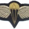 BAHRAIN Airborne Parachute jump wings, bullion, silver #2